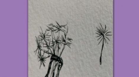Gedichtesammlung: Sternenblicke und Dornenwörter